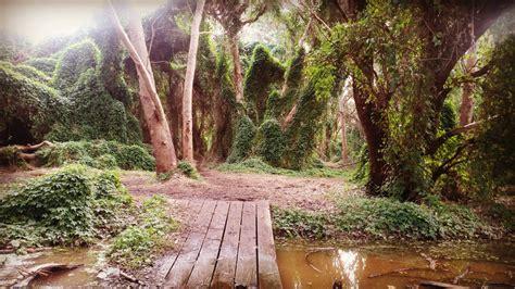 Perth's Secret Garden Wonderland