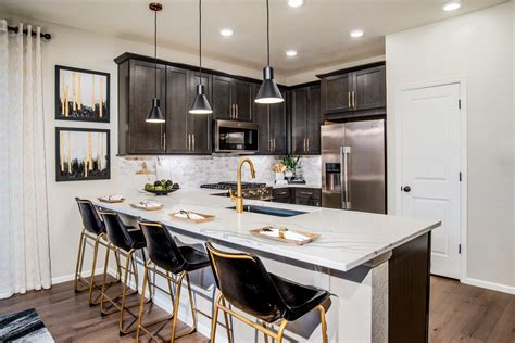 Kb Home Design Studio Denver by Single Family Paired Homes For Sale Beeler Park Denver