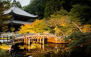 Kyoto Photo  Evening Light Up At Chion-in Temple