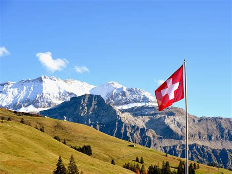 Switzerland Offers Uk Brexit Solution To Prevent Eu. Free Point Of Sale System Ez Budget Insurance. Carpet Cleaning Nashville Tn. Laws Against Sexual Harassment. Send Money Via Moneygram Pitney Bowes Red Ink. Best Business To Business Websites. Employment Search Websites Vps Reseller Plans. Best Price Holiday Photo Cards. Best Anti Inflammatory For Knee Pain