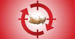 Understanding Bait Rotation Key To Rodent Control
