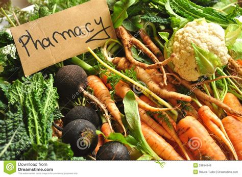 bio cuisine organic food as our pharmacy medicine royalty free