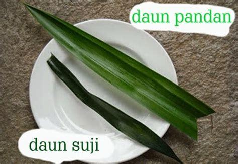 tumbuhan manfaatcoid part