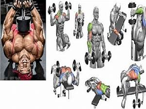 Best Dumbbell Workout Routines