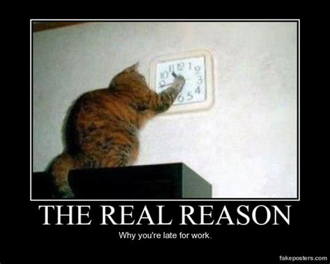 funny late cats motivational reason workplace why evil cat re poster posters motivation always memes humor meeting demotivational animals staff