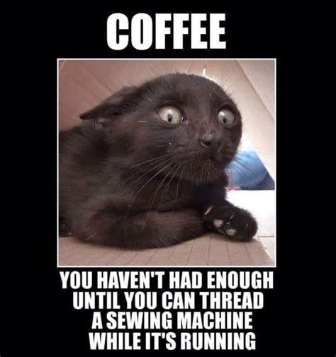 Funny Coffee Memes - funny need coffee pictures www pixshark com images galleries with a bite