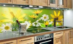 Küche Spritzschutz Plexiglas : 35 k chenr ckw nde aus glas opulenter spritzschutz f r ~ Michelbontemps.com Haus und Dekorationen