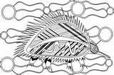 Aboriginal Coloring Colouring Indigenous Symbols Animals Animal Result Dreamtime Leech Naidoc Week sketch template