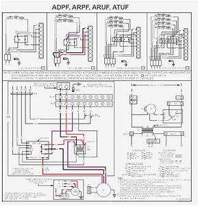 Gallery Of Goodman Furnace Wiring Diagram Sample