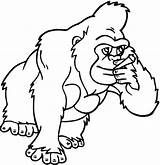 Gorilla Coloring Clipart Gorillas Chest Pounding Monkey Funny Cliparts Library Mammals Clipartmag Clipartion Presentations Projects Attribution Forget Link Don Websites sketch template