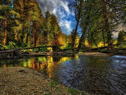 Hdr Widescreen River Wallpapers Cool Desktop Forest