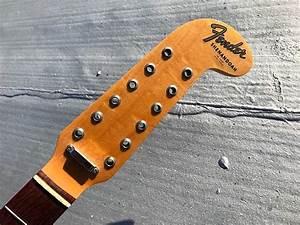Fender 12-string Neck - Shenandoah