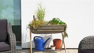 Hecht International : grow hecht international ~ A.2002-acura-tl-radio.info Haus und Dekorationen