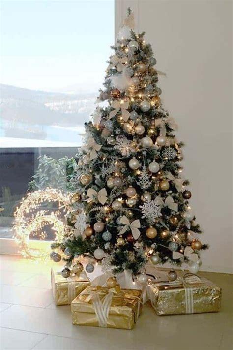 weihnachtsbaum trends  pm   meine tanne