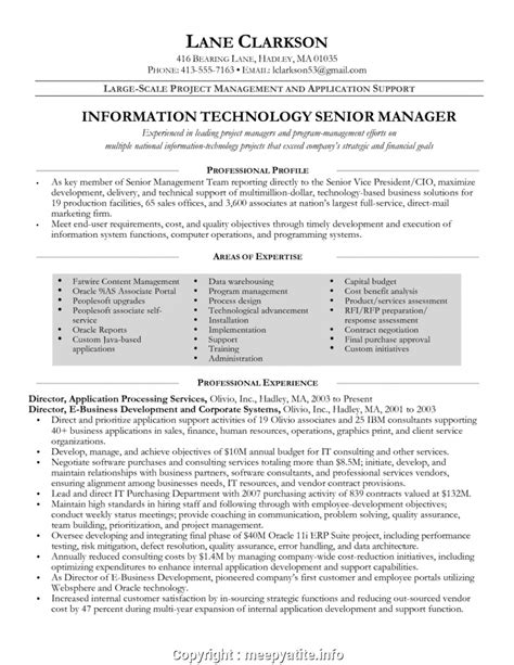 Professional Summary For Project Manager by Professional It Manager Resume Information Technology