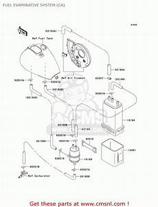 Vn800 Wiring Diagram