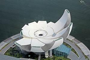 Biomimicry & Design: Lotus Building & Super-Trees of ...