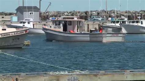 Lobster Boat For Sale Nb by Lobster Fishermen Optimistic About Catch Worried About