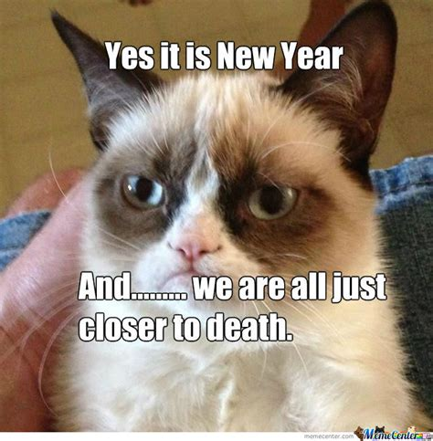 Grumpy Cat New Years Meme - grumpy cat on new years by captain rainbows meme center