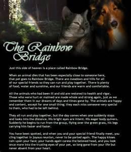 the rainbow bridge poem for cats rainbow bridge cat poem