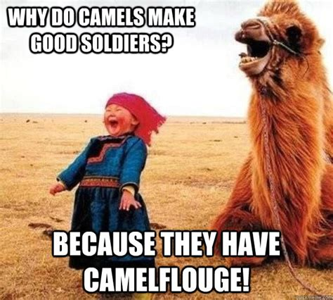 Camel Memes - guess what day it is snow day funny meme