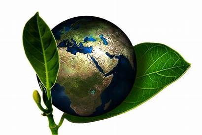 Sustainable Definition Living Earth