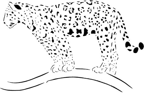 cheetah pitchers wallpaperall