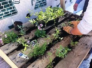 pas a pas comment se creer un mur vegetal elle With déco chambre bébé pas cher avec gros bac a fleur en bois