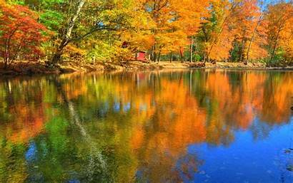 Fall Desktop Wallpapers Autumn Nature Trees Leaves