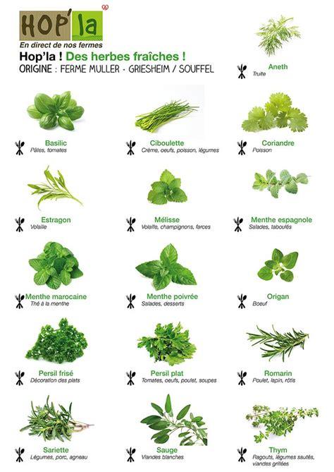 les 25 meilleures idées concernant herbes aromatiques sur