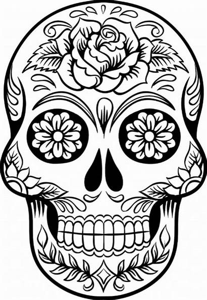 Skull Coloring Sugar Pages Scary Printable Forget
