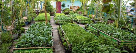 เกษตรผสมผสานอีกรูปแบบการการทำที่ได้ผลจริง | ข้อมูลการเกษตร พืชเศรษฐกิจ ผลผลิตทางการเกษตร ...