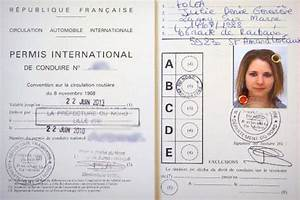 Cerfa Perte Permis De Conduire : adventure in australia with you international licence ~ Gottalentnigeria.com Avis de Voitures