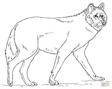 Realistic Grey Wolf Coloring Page