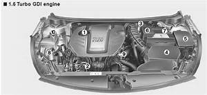 Kia Forte  Engine Compartment - Your Vehicle At A Glance