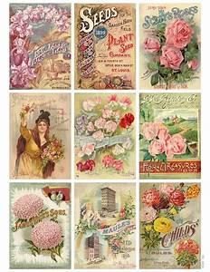 Jodie Lee Designs: Free Printable Download! Vintage Seed ...