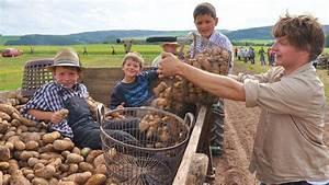 Frottee Bettwäsche Wie Früher : kartoffeln ernten wie fr her korbach ~ Yasmunasinghe.com Haus und Dekorationen