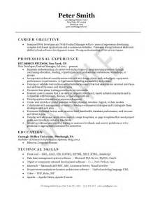 web developer resume professional summary web developer resume exle