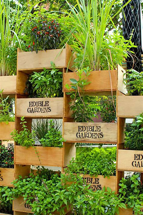 awesome diy vertical garden ideas   refresh