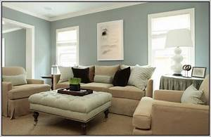 Good colors for a living room home design for What is a good color for a living room