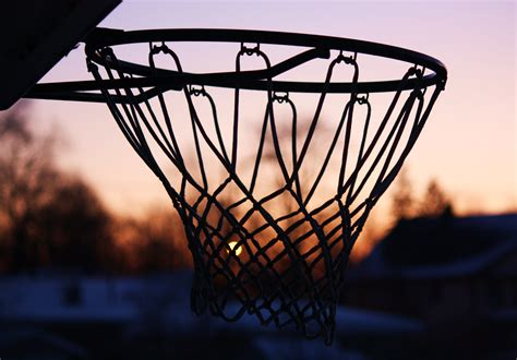 image images galleries basketball pictures