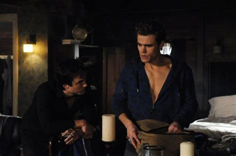 the diaries damon and stefan salvatore photo