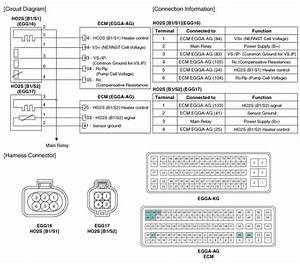 Hyundai Accent  Heated Oxygen Sensor  Ho2s   Schematic