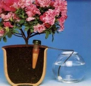 Bewässerungssystem Für Zimmerpflanzen : binder schramm ~ Markanthonyermac.com Haus und Dekorationen