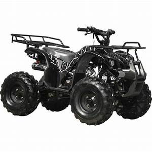 125cc Hunter Xlfully Assembled Ready To Ridecoolster Hunter Xl Kids Atvs Include  Remote Kill