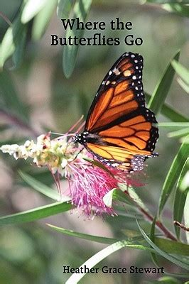 butterflies   heather grace stewart