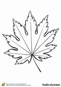 Feuilles D Automne à Imprimer : coloriage feuille d 39 erable en automne ~ Nature-et-papiers.com Idées de Décoration