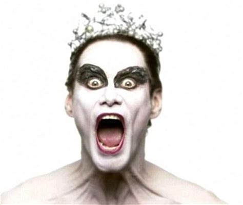 Black Swan Meme - i m the swan queen meme research discussion know your meme