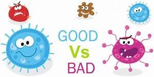 Probiotics and Cancer - Wyndham Health