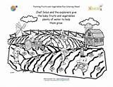 Coloring Crops Printable Farm Pages Grow Growing Vegetables Fruits Farming Sheet Plants Nutrition Water Farmers Fork Need Garden Printables Watering sketch template